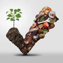 Boutique compost